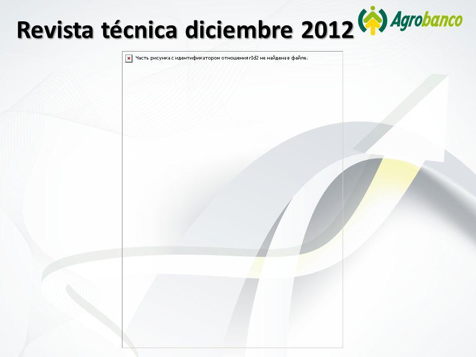 Revista técnica diciembre 2012