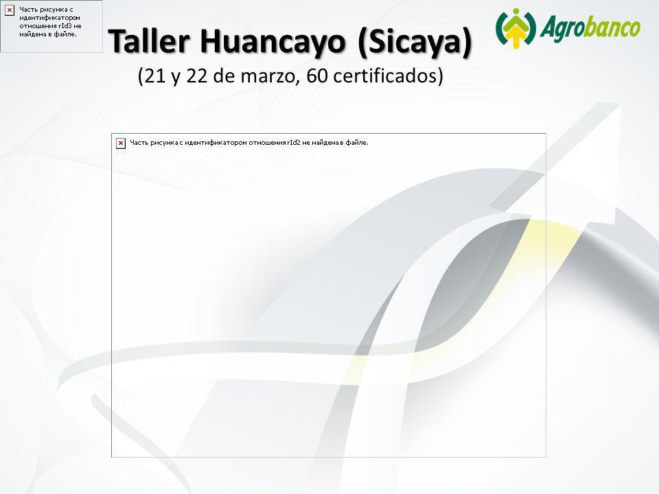 Taller Huancayo (Sicaya) (21 y 22 de marzo, 60 certificados)