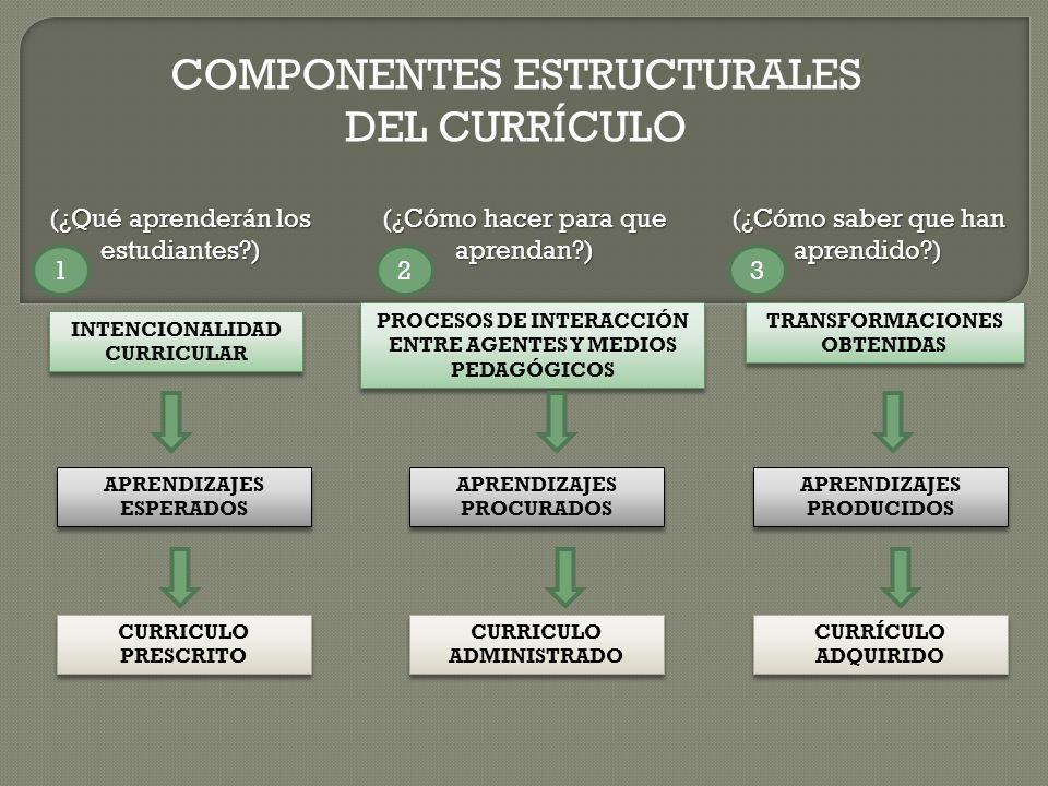 COMPONENTES ESTRUCTURALES DEL CURRÍCULO