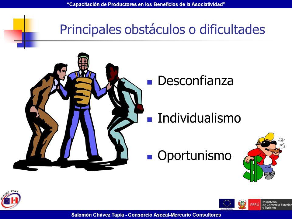 Principales obstáculos o dificultades