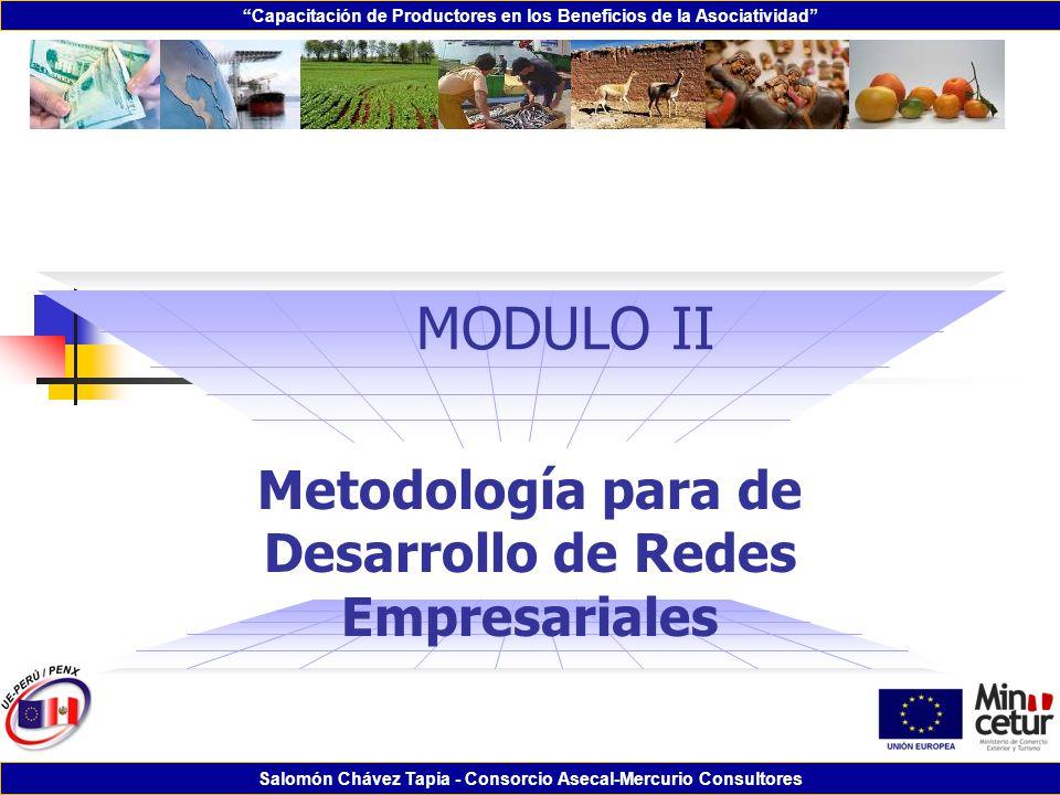 Metodología para de Desarrollo de Redes Empresariales