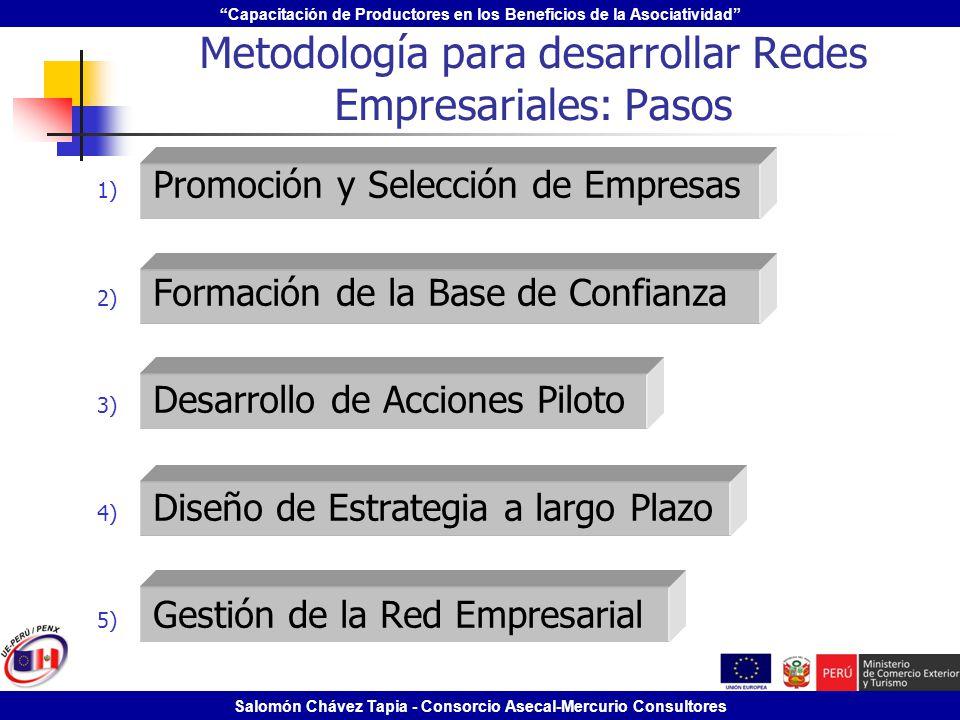 Metodología para desarrollar Redes Empresariales: Pasos