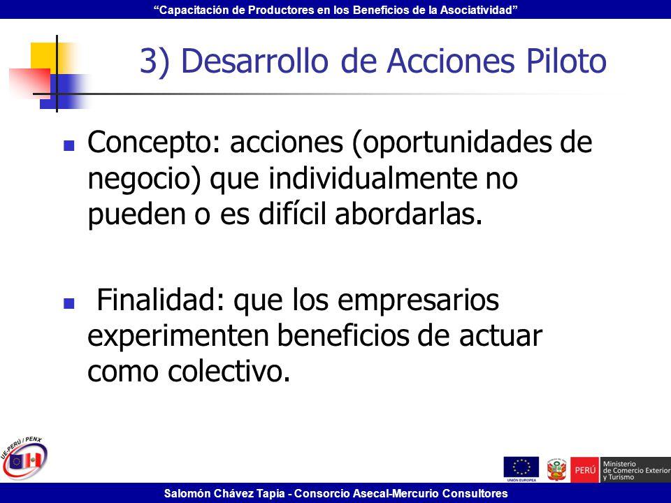 3) Desarrollo de Acciones Piloto