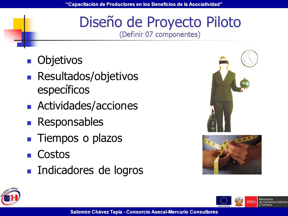 Diseño de Proyecto Piloto (Definir 07 componentes)