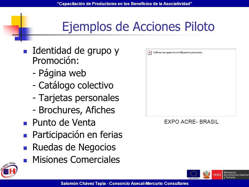 Ejemplos de Acciones Piloto