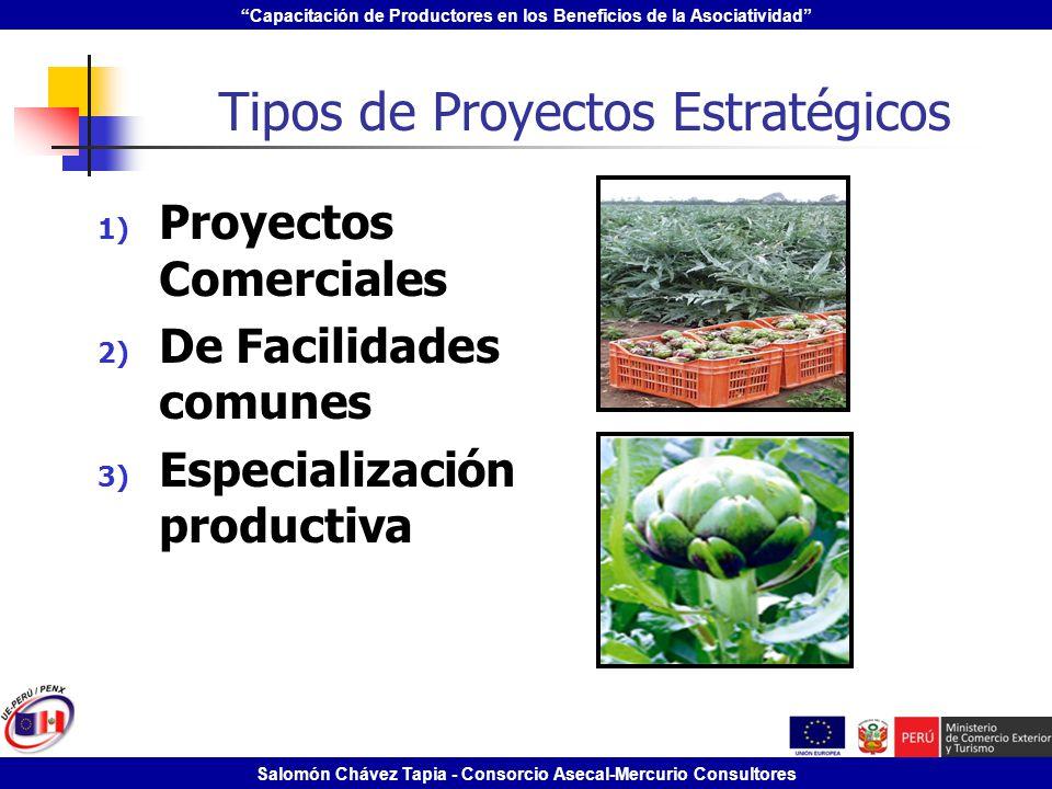 Tipos de Proyectos Estratégicos