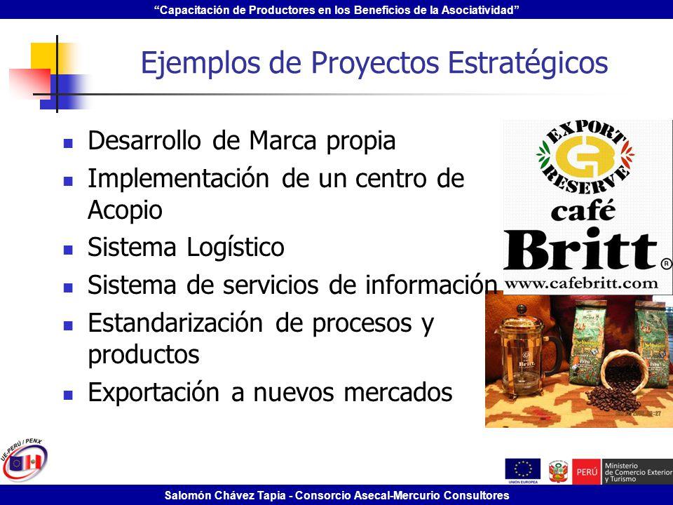 Ejemplos de Proyectos Estratégicos