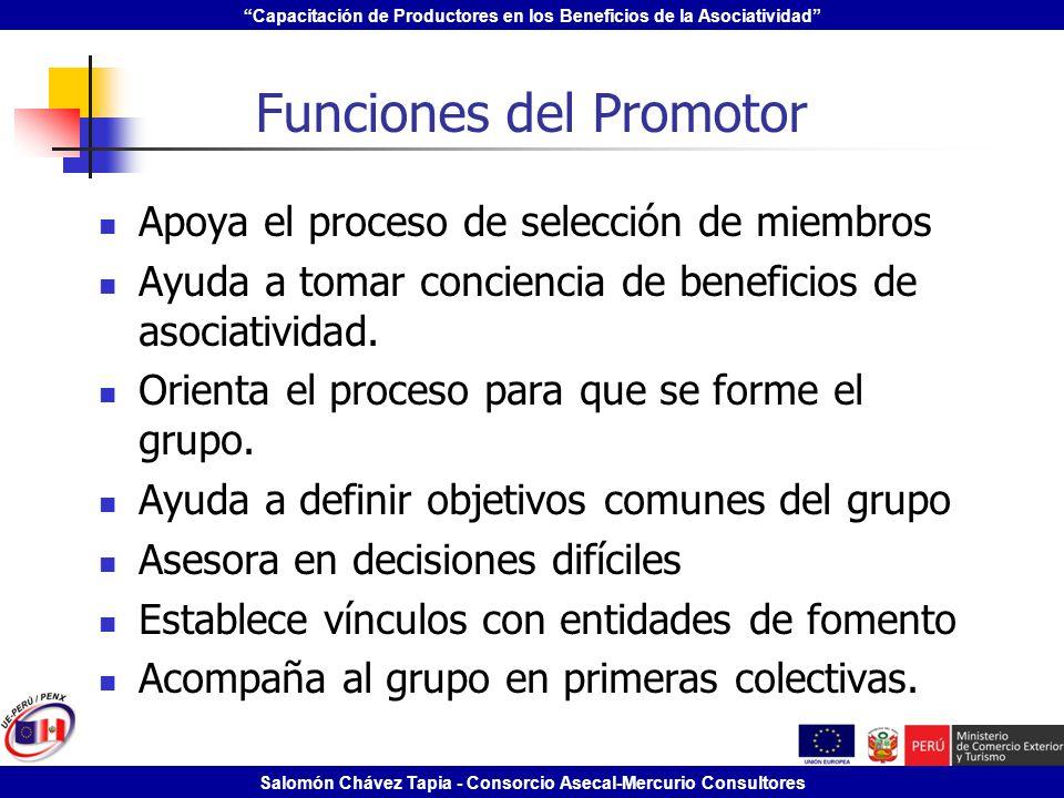 Funciones del Promotor