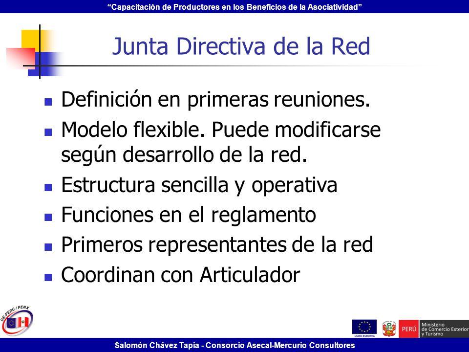 Junta Directiva de la Red
