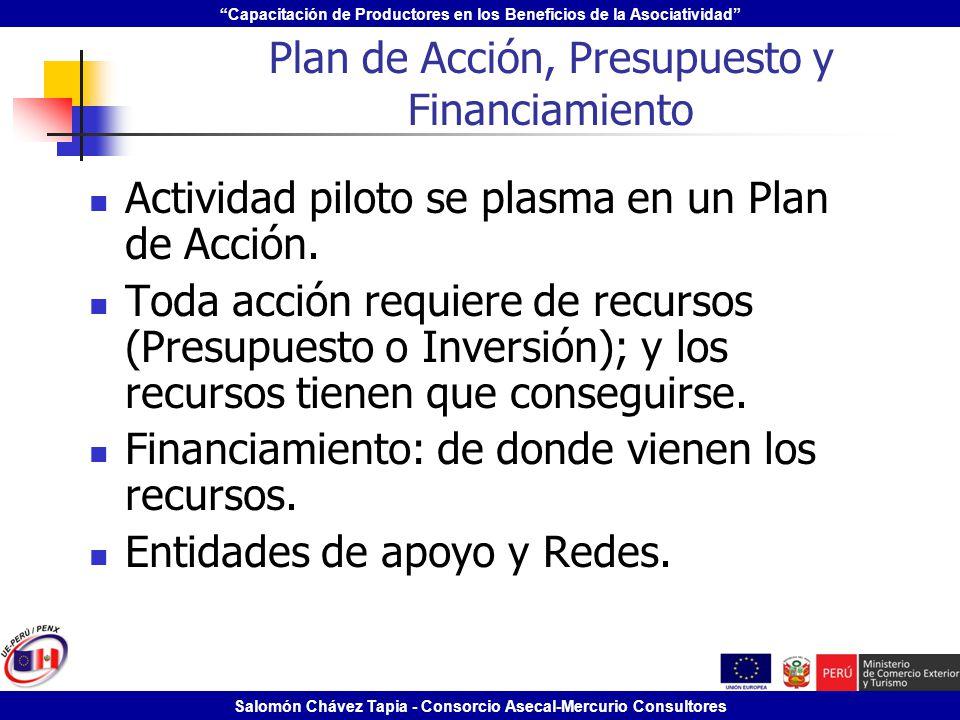 Plan de Acción, Presupuesto y Financiamiento