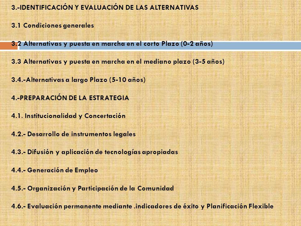 3.-IDENTIFICACIÓN Y EVALUACIÓN DE LAS ALTERNATIVAS