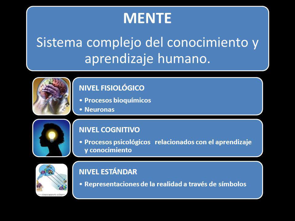 Sistema complejo del conocimiento y aprendizaje humano.