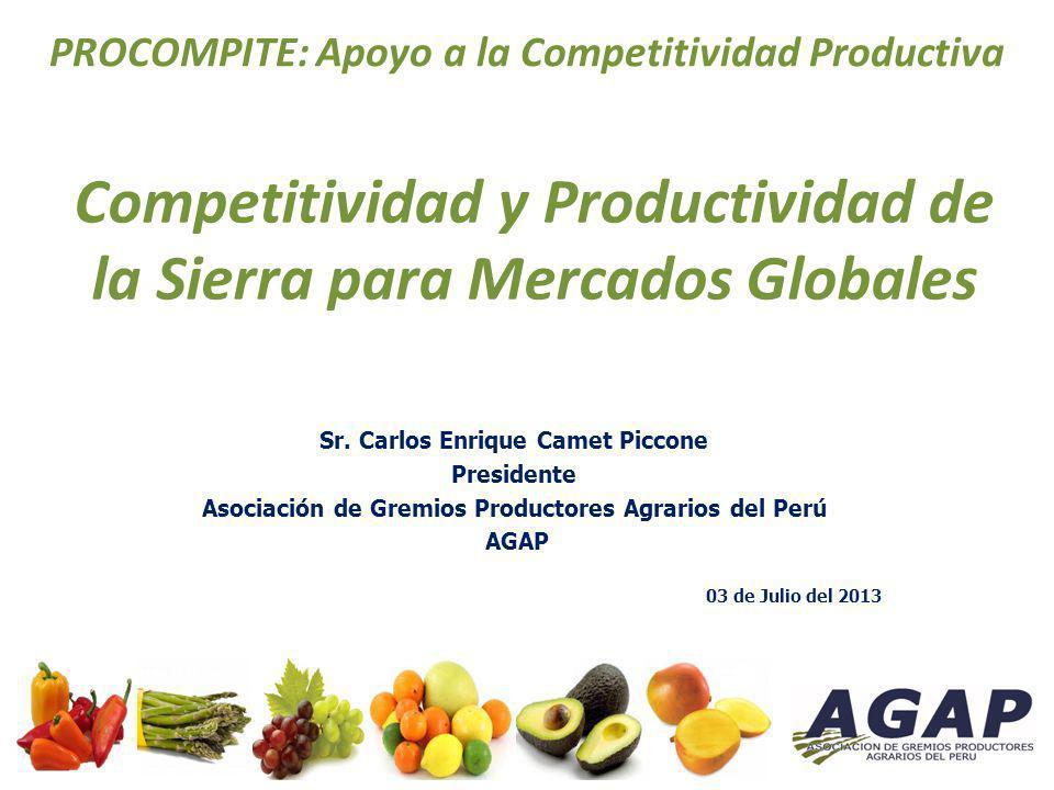 Competitividad y Productividad de la Sierra para Mercados Globales