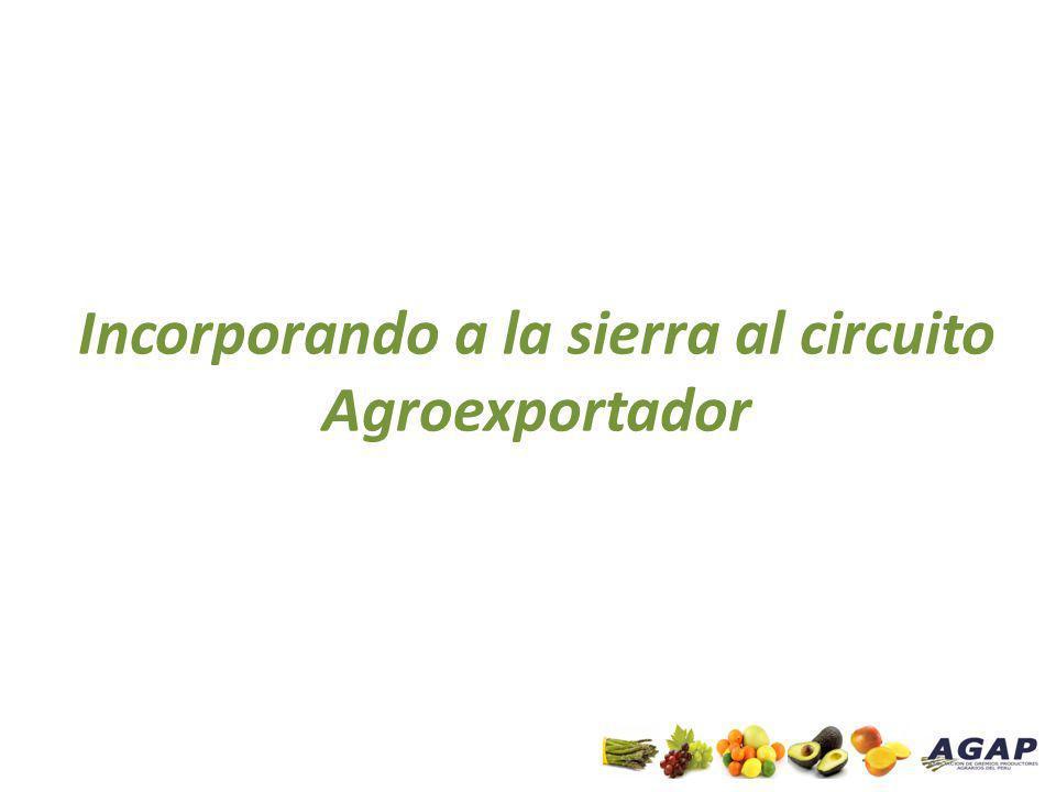 Incorporando a la sierra al circuito Agroexportador