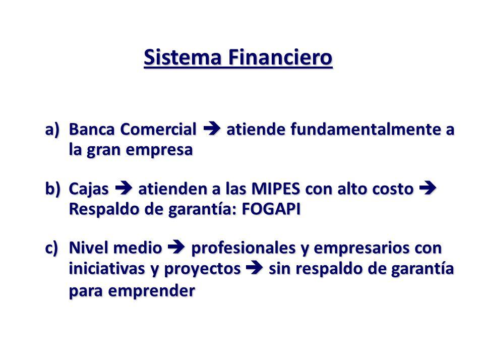 Sistema Financiero Banca Comercial  atiende fundamentalmente a la gran empresa.