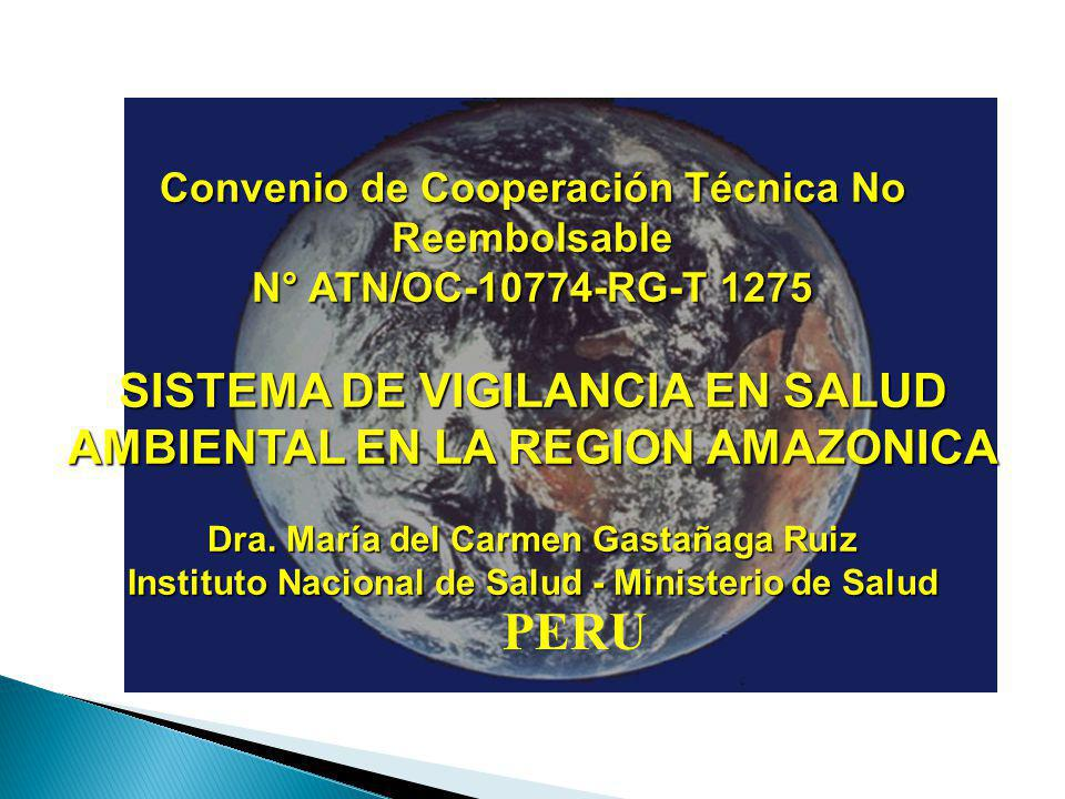 PERU SISTEMA DE VIGILANCIA EN SALUD AMBIENTAL EN LA REGION AMAZONICA