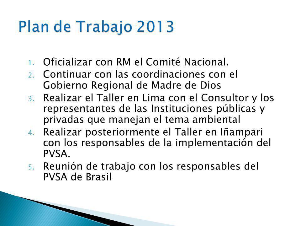 Plan de Trabajo 2013 Oficializar con RM el Comité Nacional.