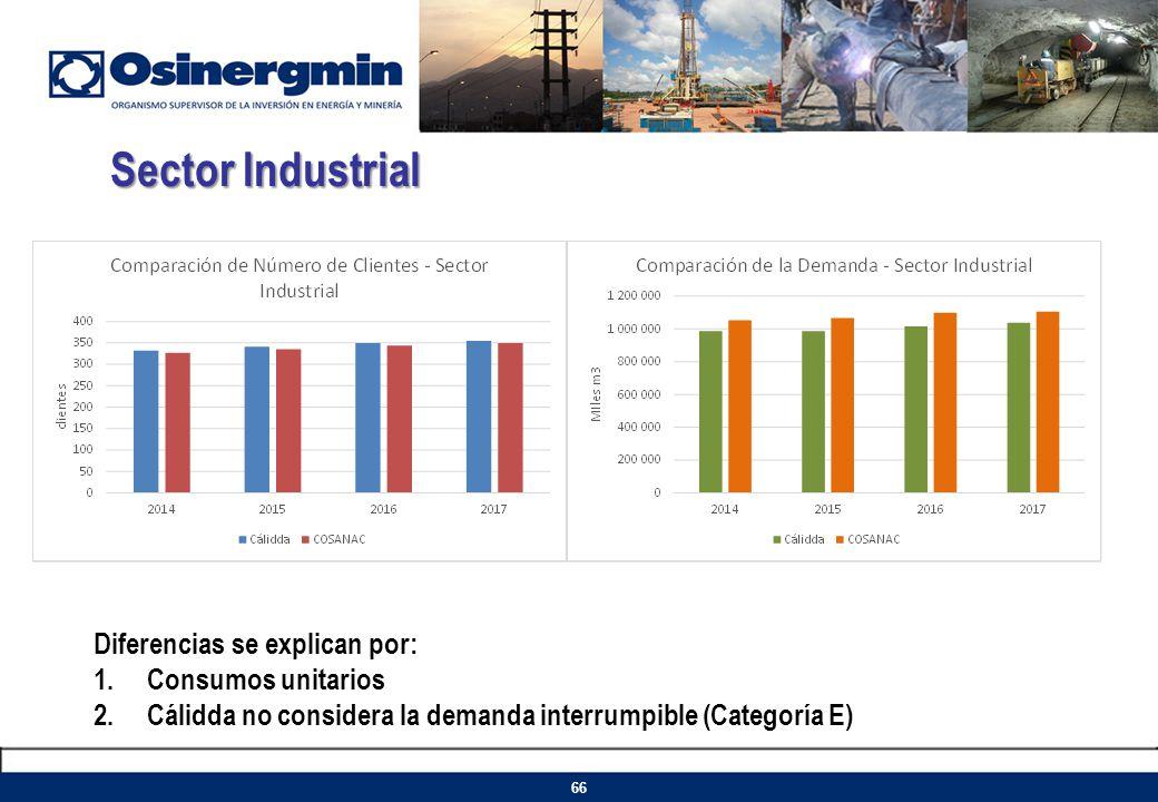 Sector Industrial Diferencias se explican por: Consumos unitarios