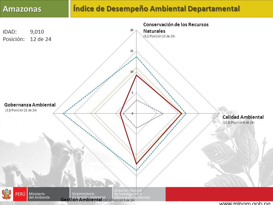 Amazonas Índice de Desempeño Ambiental Departamental IDAD: 9,010