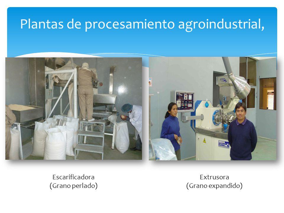 Plantas de procesamiento agroindustrial,