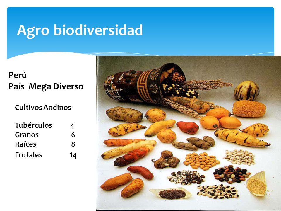 Agro biodiversidad Perú País Mega Diverso Cultivos Andinos