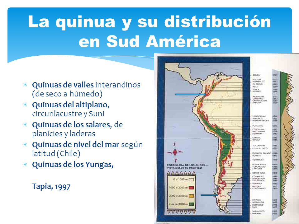 La quinua y su distribución en Sud América
