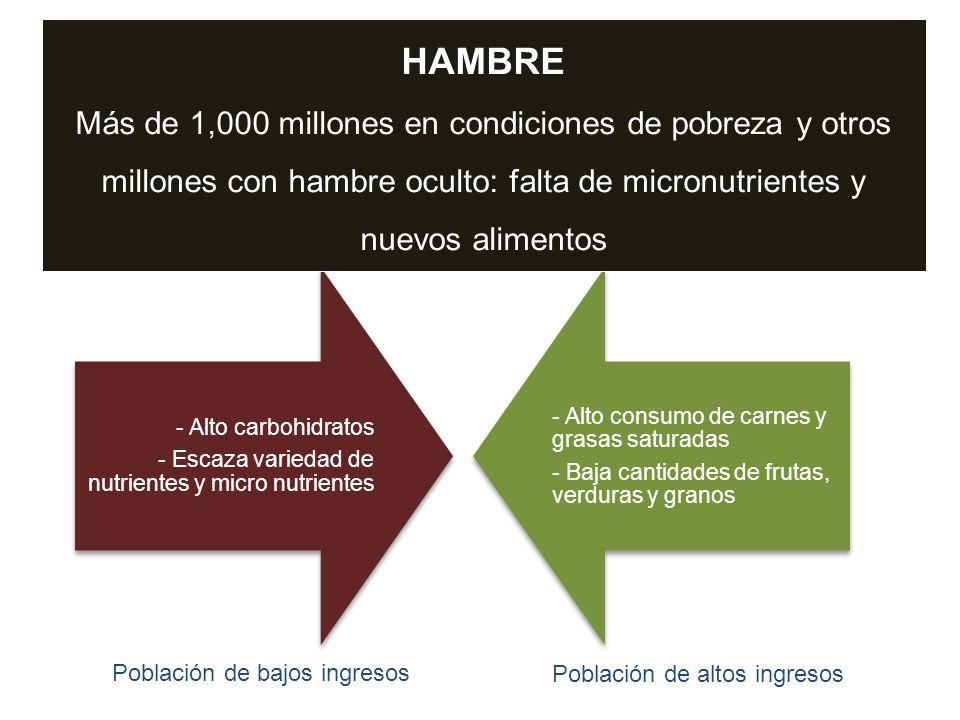 HAMBRE Más de 1,000 millones en condiciones de pobreza y otros millones con hambre oculto: falta de micronutrientes y nuevos alimentos.