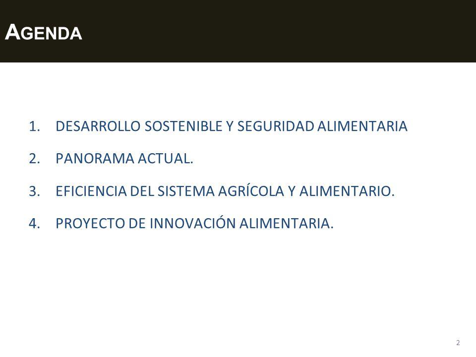 Agenda DESARROLLO SOSTENIBLE Y SEGURIDAD ALIMENTARIA PANORAMA ACTUAL.