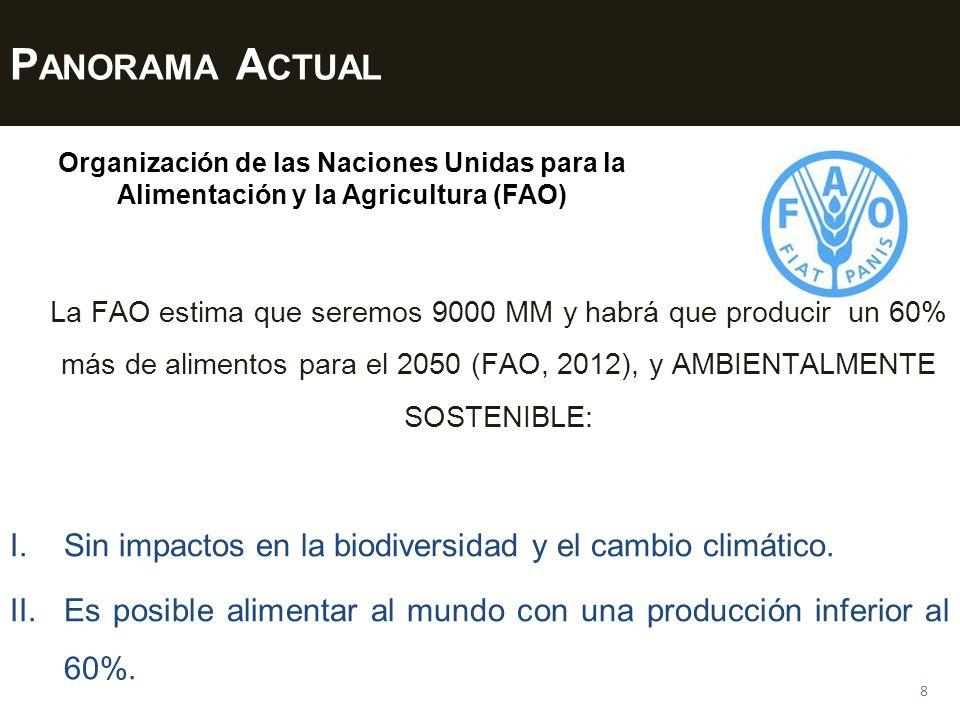Panorama Actual Organización de las Naciones Unidas para la Alimentación y la Agricultura (FAO)
