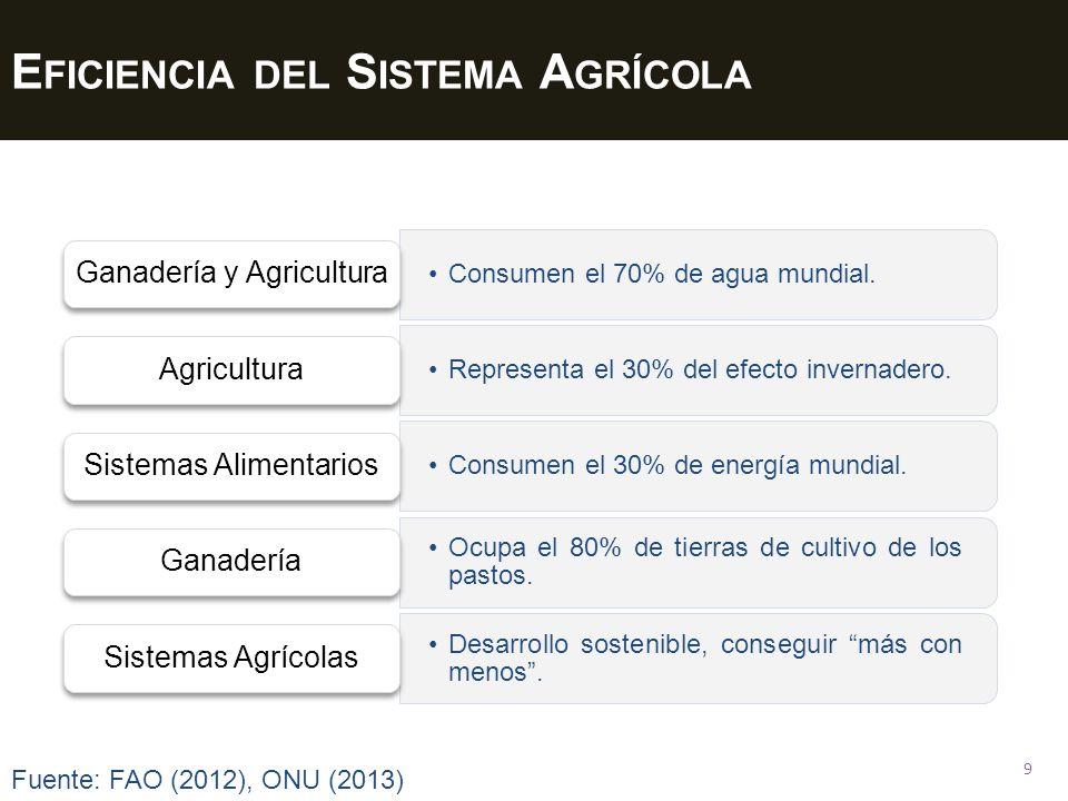Eficiencia del Sistema Agrícola