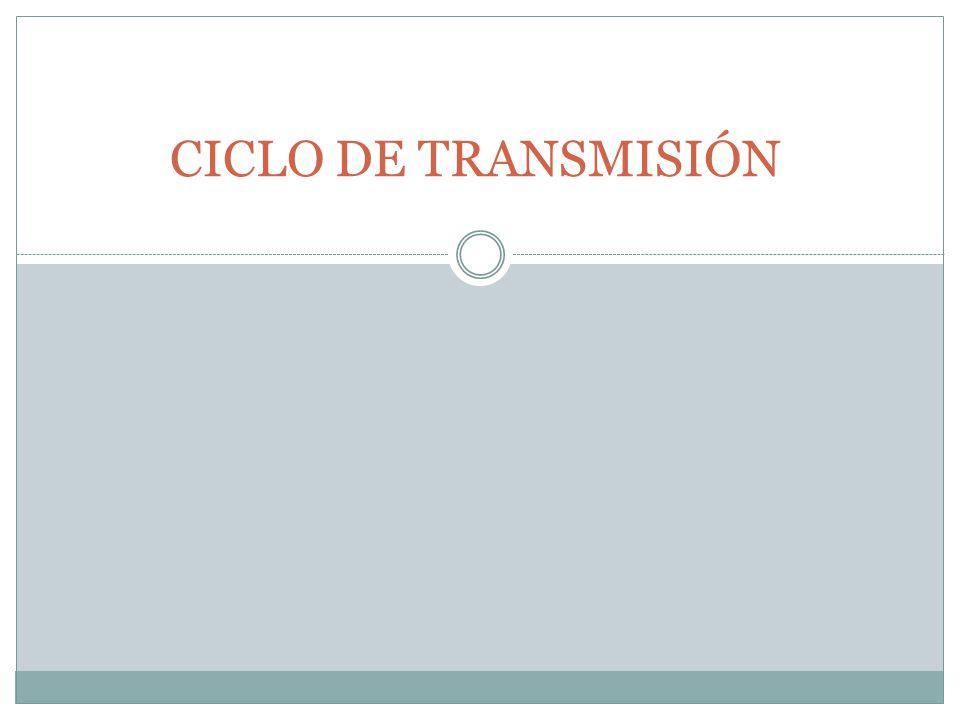 CICLO DE TRANSMISIÓN