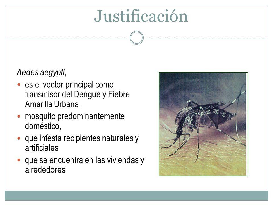 Justificación Aedes aegypti,