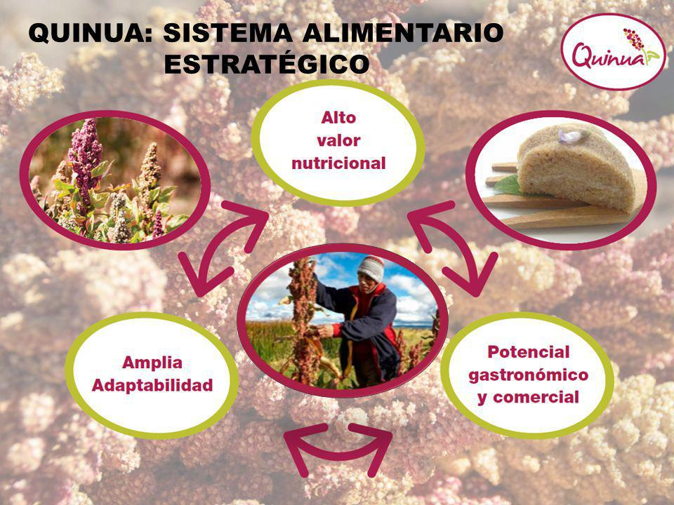 QUINUA: SISTEMA ALIMENTARIO ESTRATÉGICO