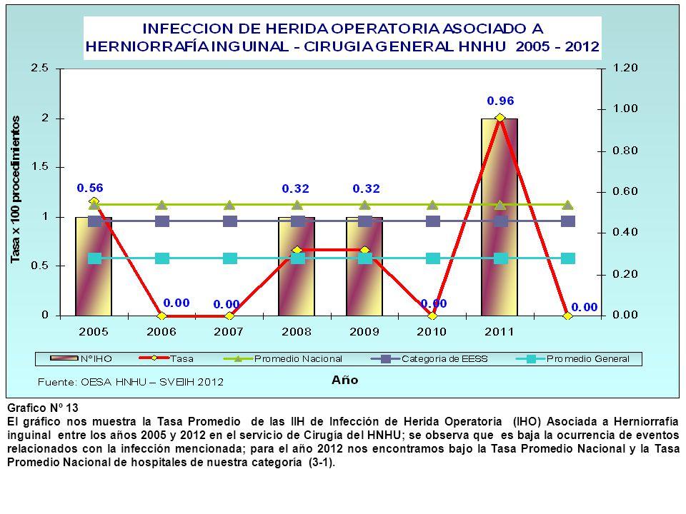 Grafico Nº 13