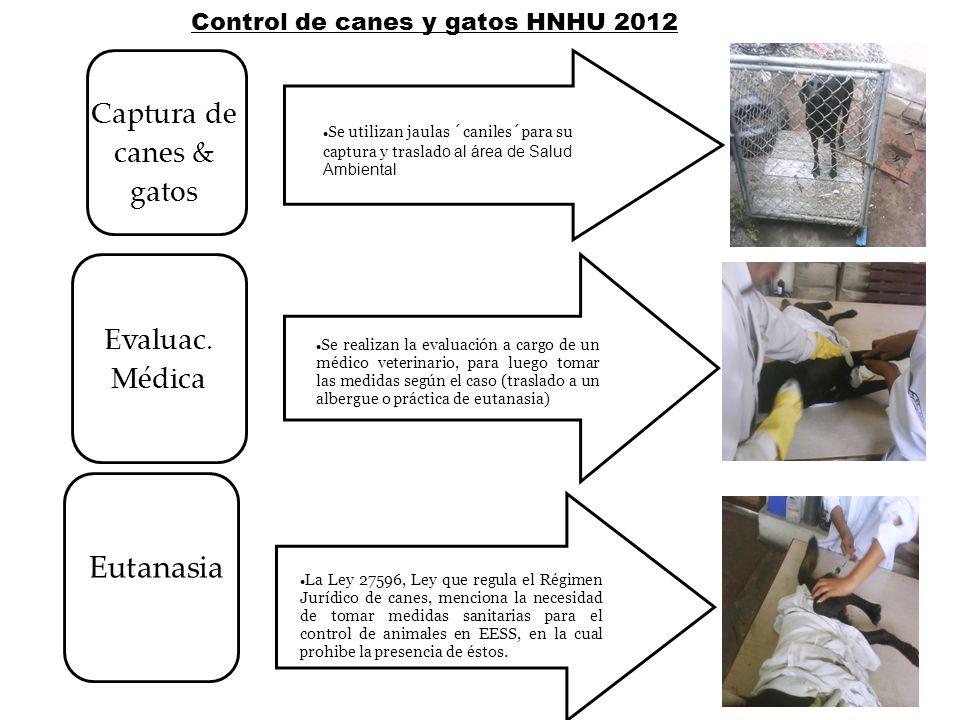 Control de canes y gatos HNHU 2012