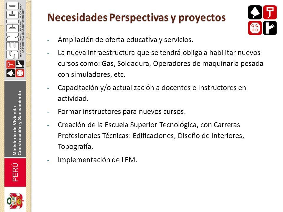 Necesidades Perspectivas y proyectos