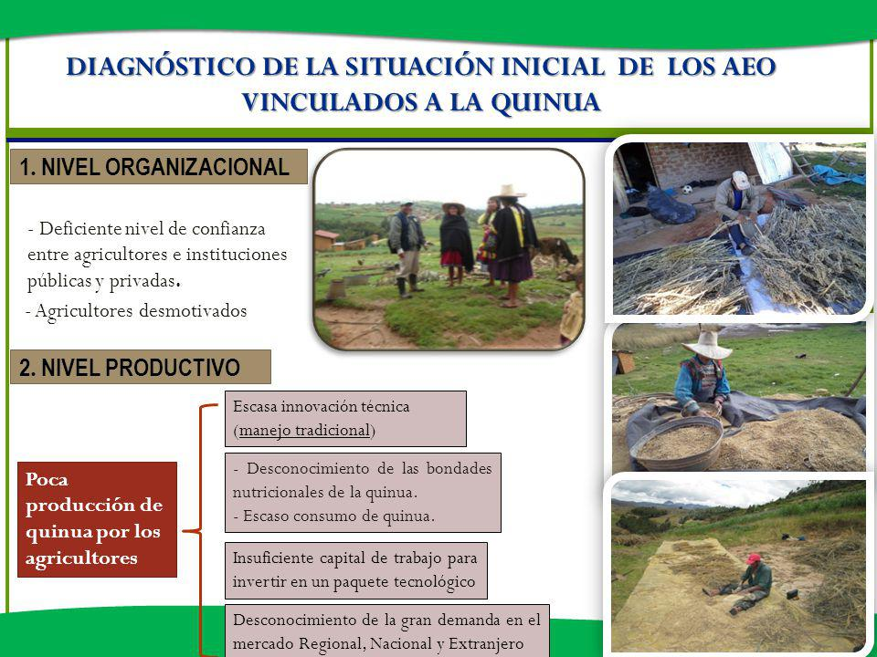 DIAGNÓSTICO DE LA SITUACIÓN INICIAL DE LOS AEO VINCULADOS A LA QUINUA