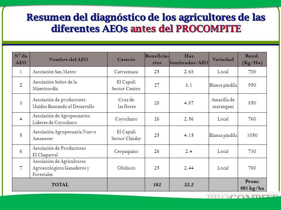 Resumen del diagnóstico de los agricultores de las diferentes AEOs antes del PROCOMPITE