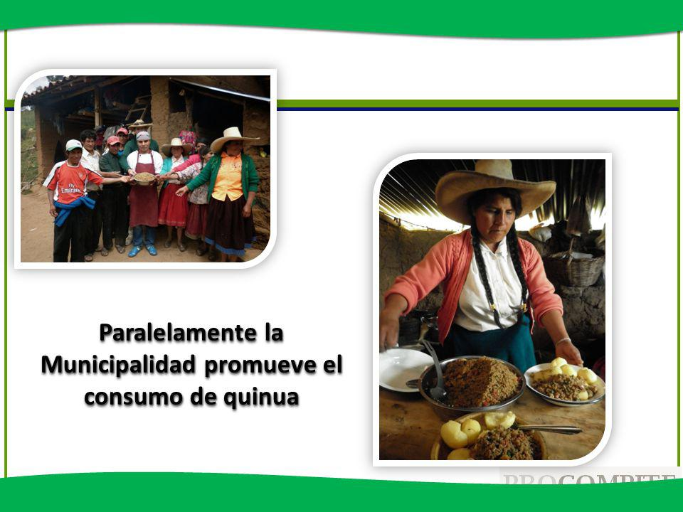 Paralelamente la Municipalidad promueve el consumo de quinua