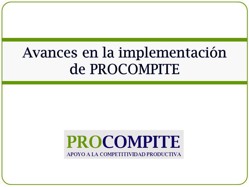 Avances en la implementación de PROCOMPITE