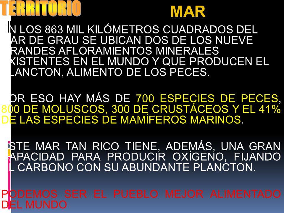 TERRITORIO MAR.