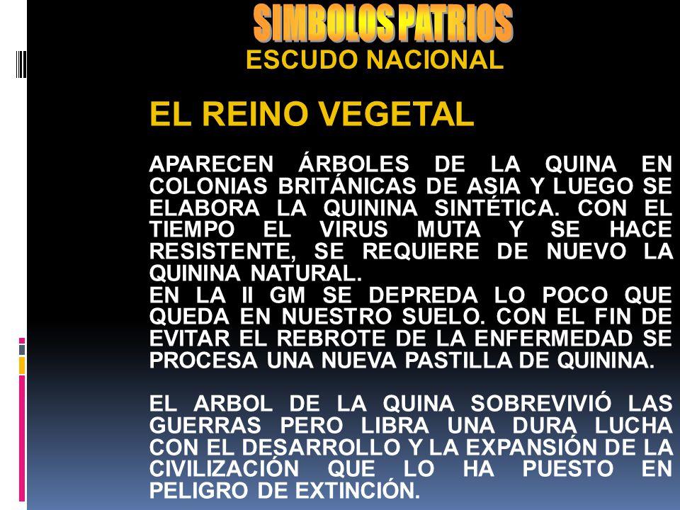 SIMBOLOS PATRIOS EL REINO VEGETAL ESCUDO NACIONAL