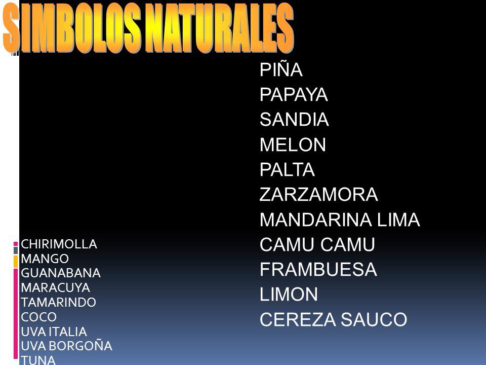 SIMBOLOS NATURALES PIÑA PAPAYA SANDIA MELON PALTA ZARZAMORA