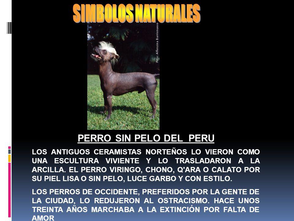 SIMBOLOS NATURALES PERRO SIN PELO DEL PERU