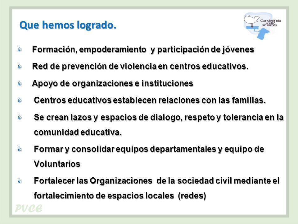 Que hemos logrado. Formación, empoderamiento y participación de jóvenes. Red de prevención de violencia en centros educativos.