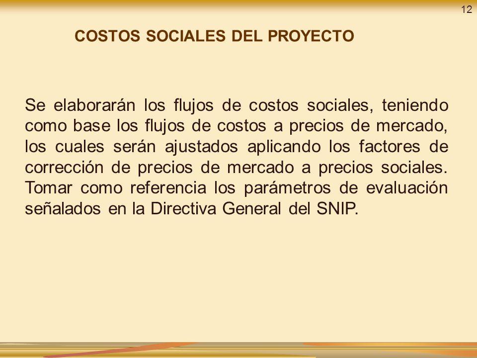 12 COSTOS SOCIALES DEL PROYECTO.