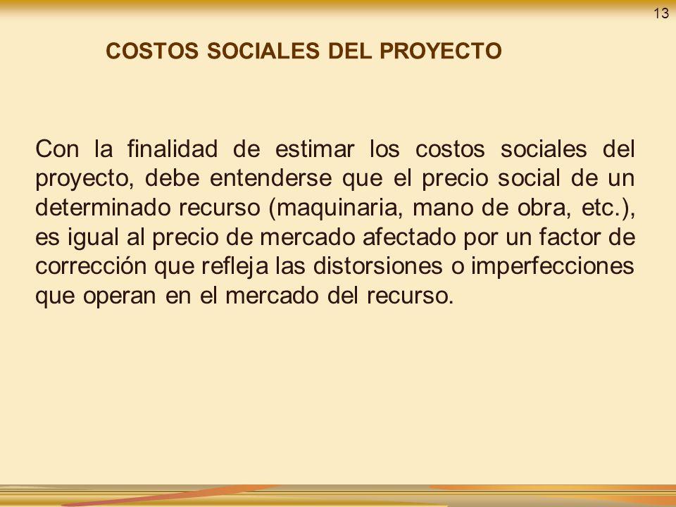 13 COSTOS SOCIALES DEL PROYECTO.
