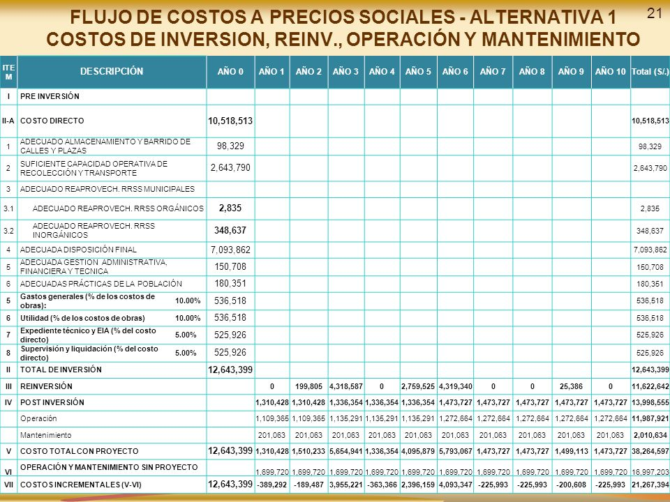 FLUJO DE COSTOS A PRECIOS SOCIALES - ALTERNATIVA 1 COSTOS DE INVERSION, REINV., OPERACIÓN Y MANTENIMIENTO