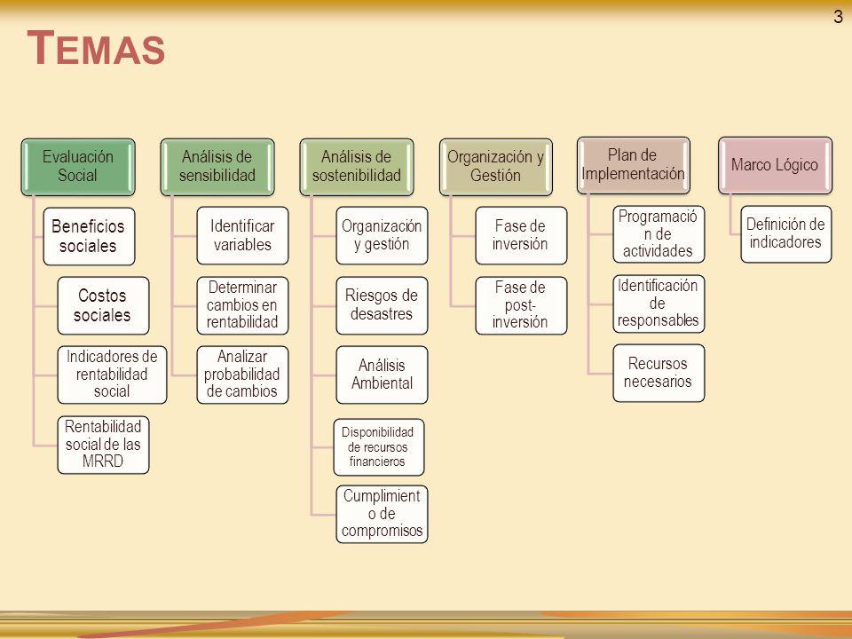 Temas 3 Beneficios sociales Costos sociales Evaluación Social
