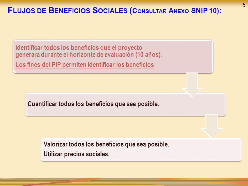 Flujos de Beneficios Sociales (Consultar Anexo SNIP 10):